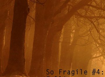 So Fragile #4: Falling
