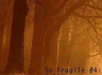 So Fragile #4: Falling