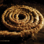 "Coil/Nine Inch Nails, ""Recoiled"""