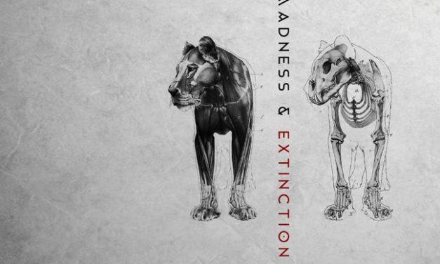 "Seeming, ""Madness & Extinction"""