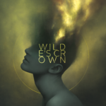 "D/SIR, ""Wilde's Crown"""