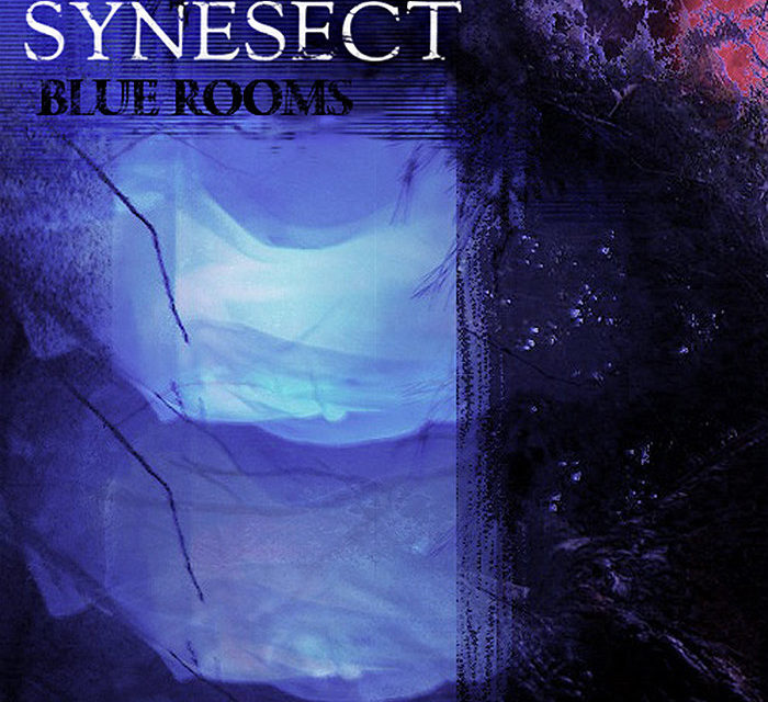 "Synesect, ""Blue Rooms"""
