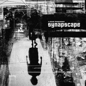 Synapscape - A Mutual Disagreement