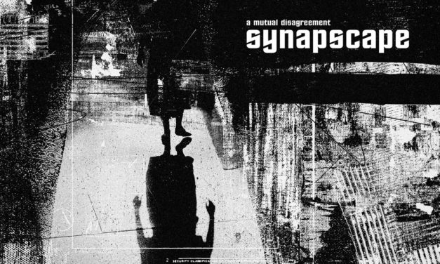Observer: labxiv & Synapscape