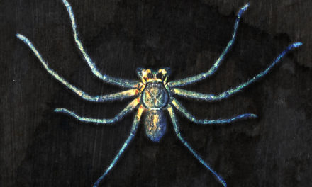 """Clan of Xymox, """"Spider on the Wall"""""""