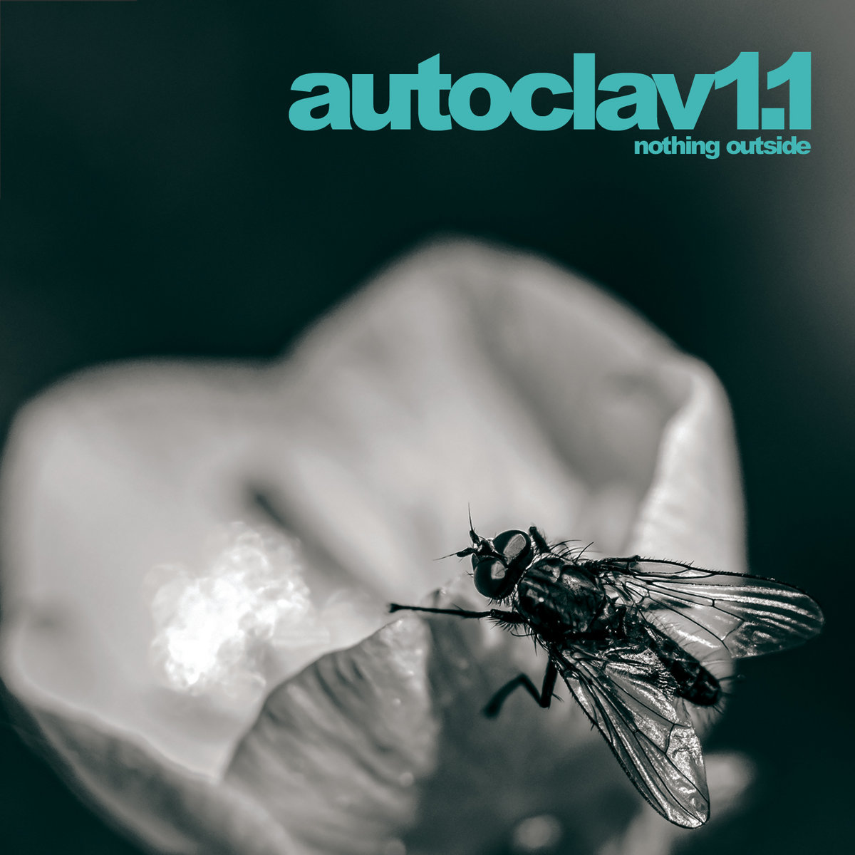 "Autoclav1.1, ""Nothing Outside"""