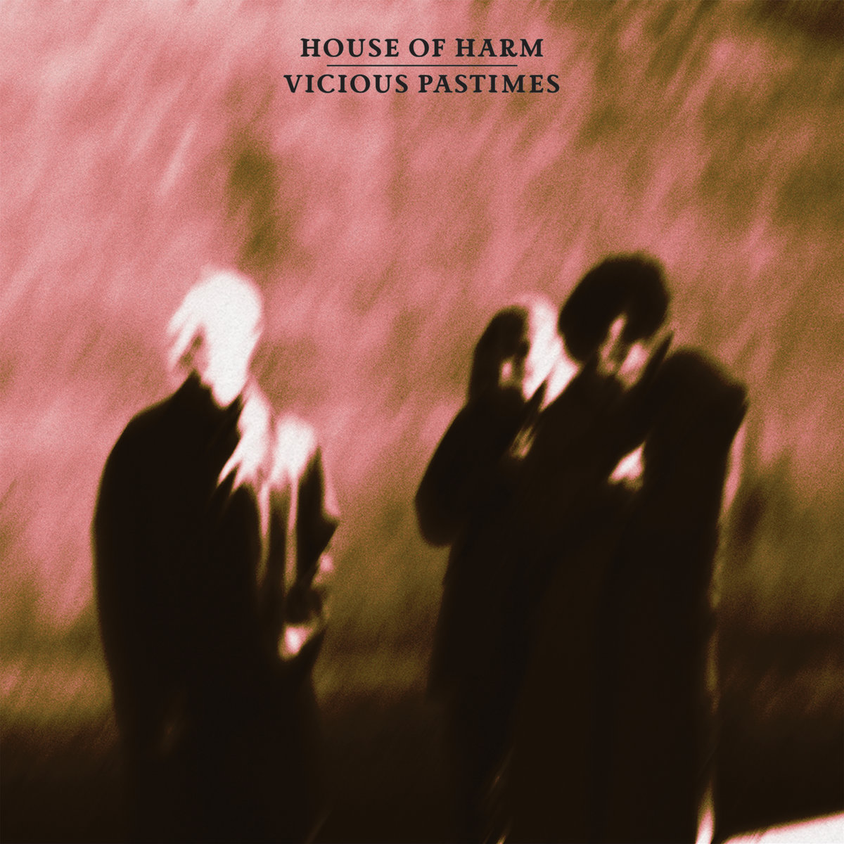 "House of Harm, ""Viscious Pastimes"""