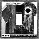 Observer: Profit Prison & Låska