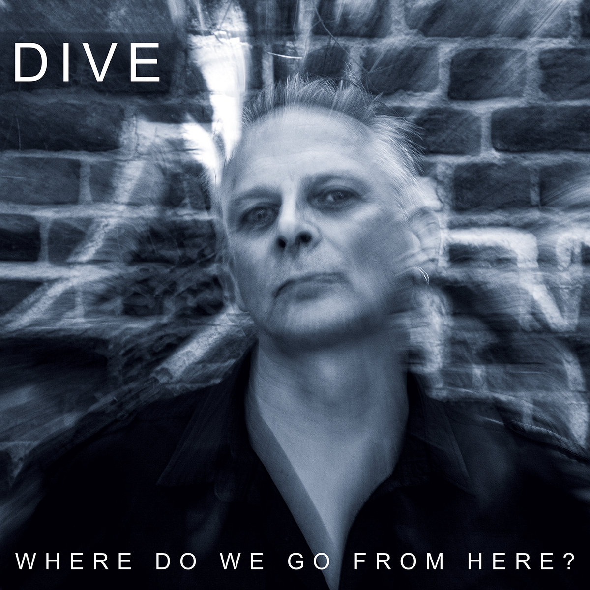 """Dive, """"Where Do We Go From Here?"""""""