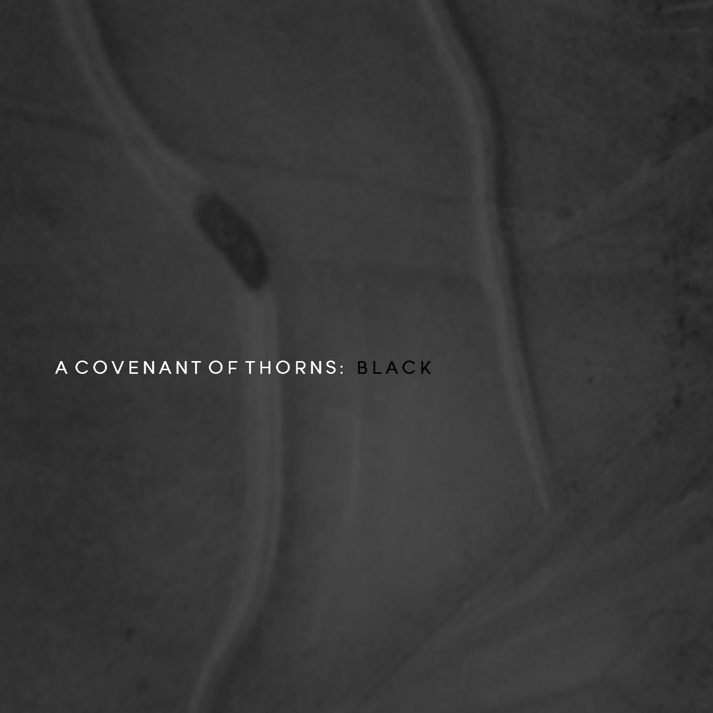 "A Covenant Of Thorns, ""Black"""