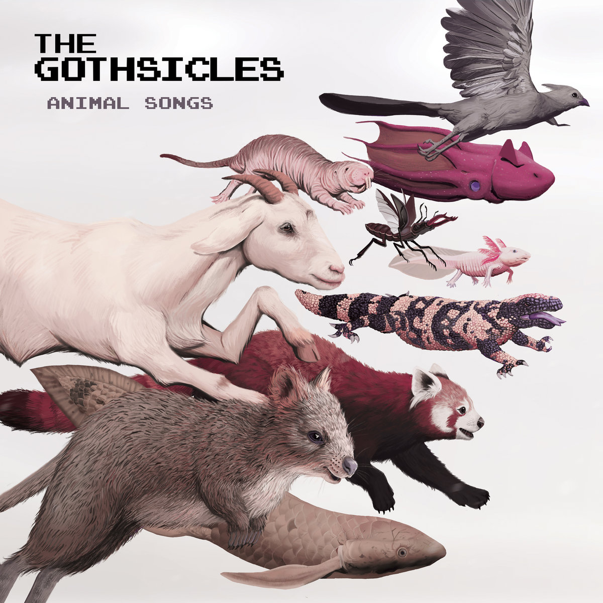 """The Gothsicles, """"Animal Songs"""""""