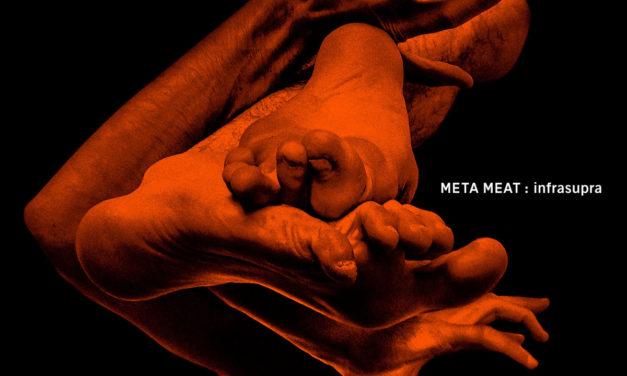 Observer: Black Light Odyssey & Meta Meat